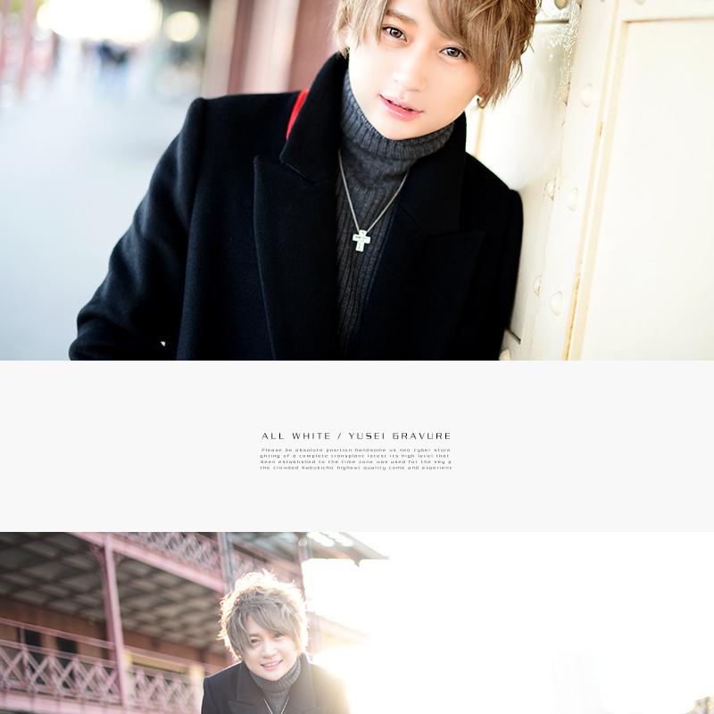 https://www.host2.jp/shop/allfirsttime/yusei/img04.jpg